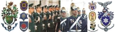 Resultado de imagem para forças e serviços de segurança
